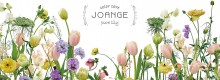 joange